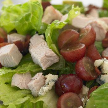salad-cat-thumb
