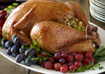 turkey-garnish